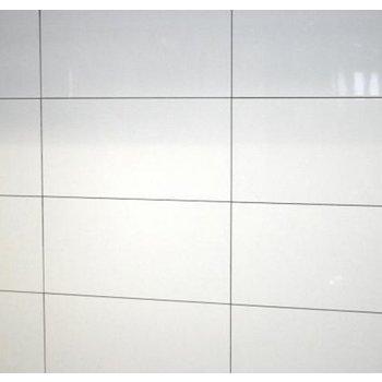 Vision Whites glans rett 30x60 a 1,62 m²