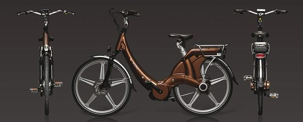Carter E-volution Bike Brons