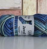 LangYarns JAWOLL Twin 14 Blauw Groen Streep Degradé