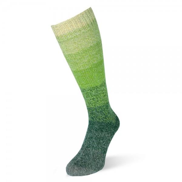 Rellana Flotte Socke 4 draads - Regenbogen 1390
