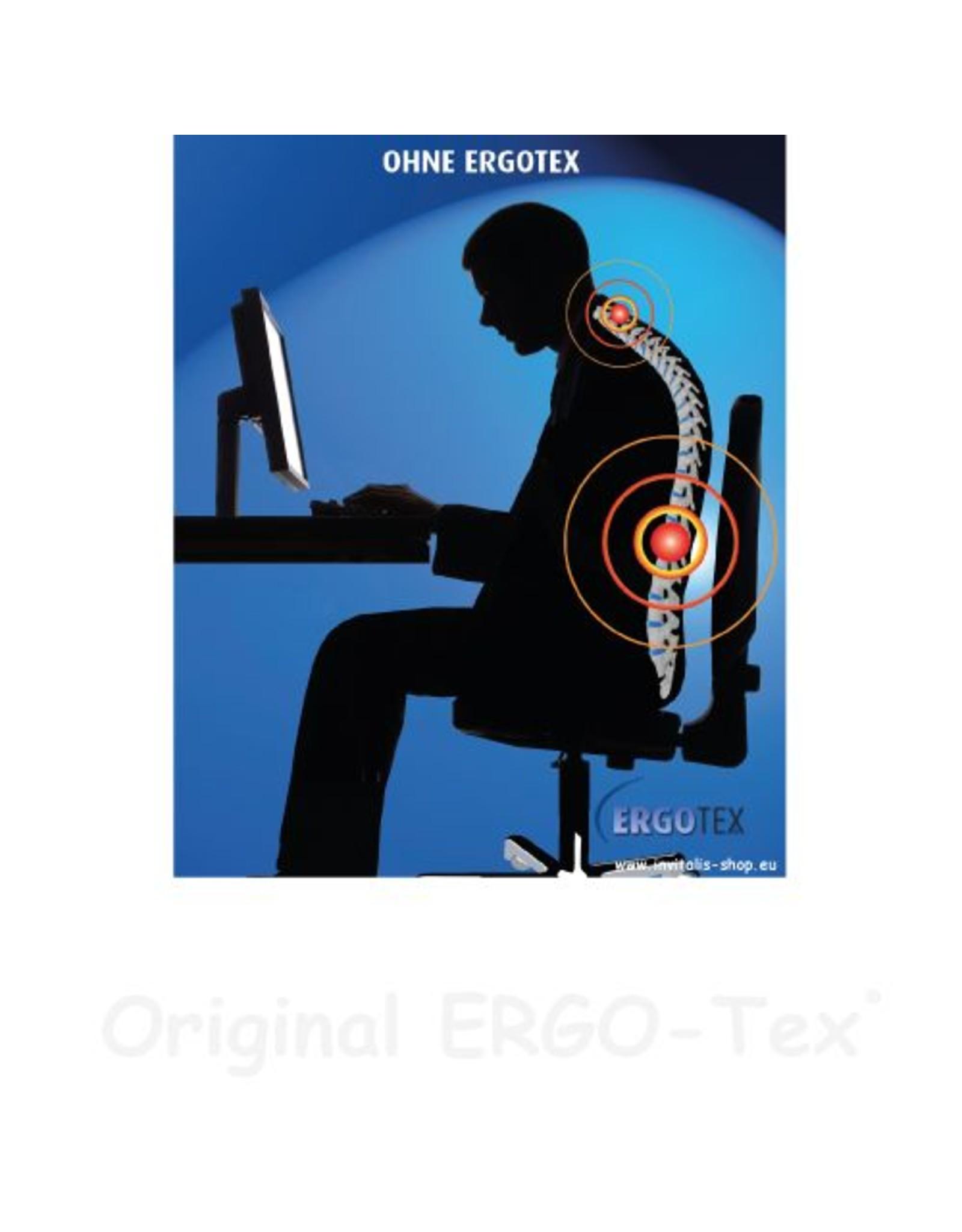 INVITALIS Ergotex - Rückenstützhilfe 2er Sparset