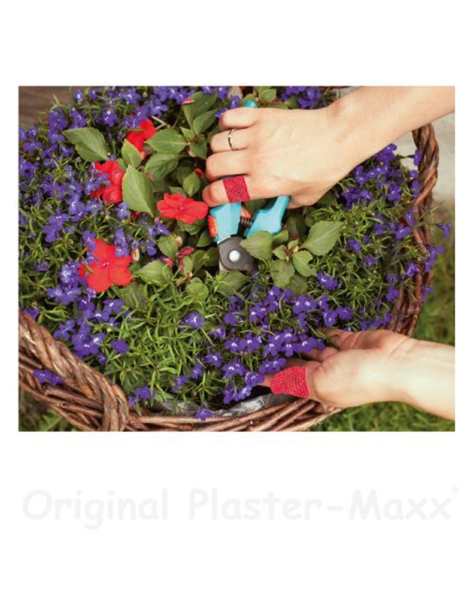 Plaster-Maxx Plaster-Maxx - Sparset 2xHaut, 1xRot