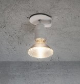 Lichtlauf GmbH Spotzki