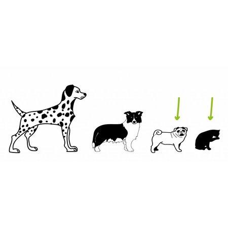Basil Hondenfietsmand Buddy Faded Denim - met kussen, riem en beugel - ook handig voor de kat!