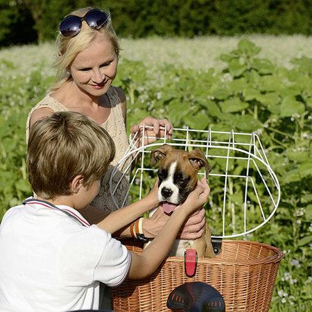 KLICKfix Hondenmand Doggy Basket voor Racktime koppeling - afneembaar