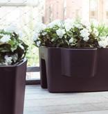 Otium Design Pendule Long. Pot de fleurs de différentes couleurs pour l'intérieur et l'extérieur.