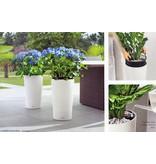 Lechuza Cilindro Bloempot - Perfect voor tuin, terras en interieur. In meerdere kleuren!