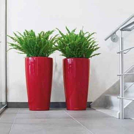Lechuza Rondo Bloempot - Perfect voor tuin, terras en interieur. In meerdere kleuren!