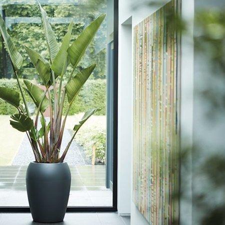 Elho Elho Pure Amphora - Pot de fleurs Anthracite 47cm H61cm -15% de réduction commander en ligne! - copie