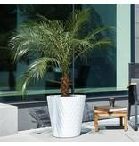 Elho Elho Pure Straight Crystal Blanc pot de fleurs 37cmH36cm -15% de réduction commander en ligne!