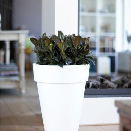 Elho Pot de fleurs haut rond pur. Pot de fleurs haut rond blanc Diam 35cm H43cm. -15% de réduction en ligne!