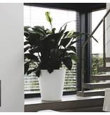 Elho Elho Pure Straight Round - Een stijlvolle Witte ronde bloempot diam 50cm H51cm! - 15% korting online bestellen!