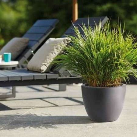 Elho Elho Pure Soft Round Élégant Anthracite rond pot de fleurs diam 50cm H37cm! -15% de réduction en ligne!