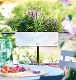 Lechuza Lechuza Cube Color Triple. Jardinière rectangulaire blanche 14 x 40cm H14cm. - 15% de réduction en ligne!