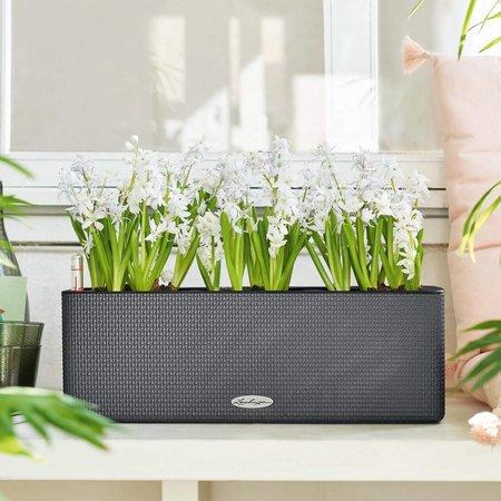 Lechuza Lechuza Cube Color Triple. Jardinière rectangulaire vert lime 14 x 40 cm H14cm. - 15% de réduction en ligne!