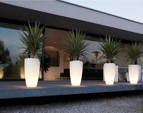 Pots de fleurs lumineux