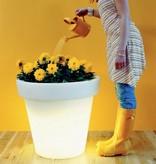 BLOOM! Bloempot van BLOOM! met verlichting. Originele bloempot in verschillende maten en kleuren!