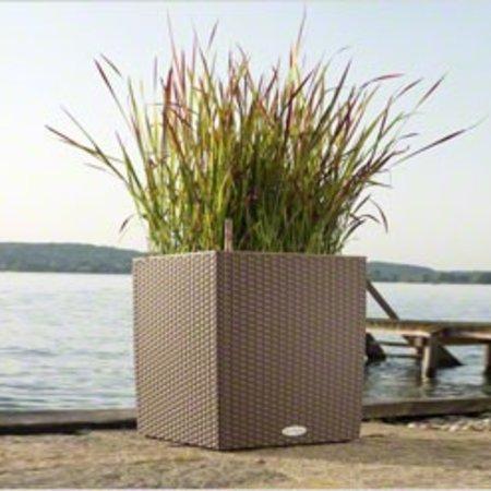 Lechuza Cube Cottage Flowerpot - Comprend Lechuza Irrigation