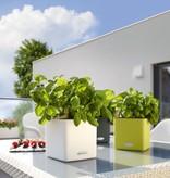 Lechuza Cube Color Kruidenpot - Inclusief Lechuza Bewateringssysteem