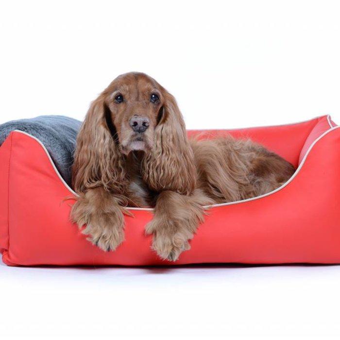 Hundebetten, Kissen und Decken
