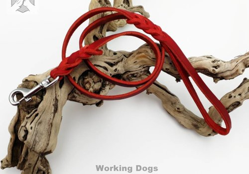 Working Dogs Lederleine rot