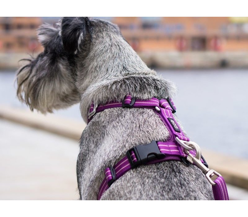 Comfort Walk Harness Air