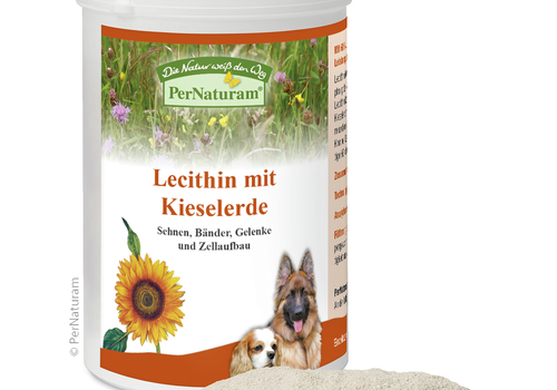 Pernaturam Lecithin + Kieselerde