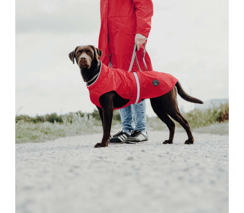 Hunde-Regenmantel Uppsala Rain