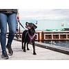 DOG Copenhagen Leine Urban Trail Leash V2 in verschieden Farben und Größen