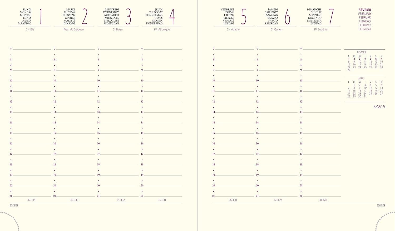Quo Vadis Kalender EUROTIME 18 VOLGA petrol 17x14,6 1W/2S