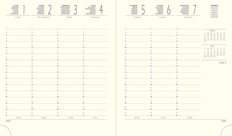 Quo Vadis Kalender EUROTIME 18 VOLGA schwarz 17x14,6 1W/2S