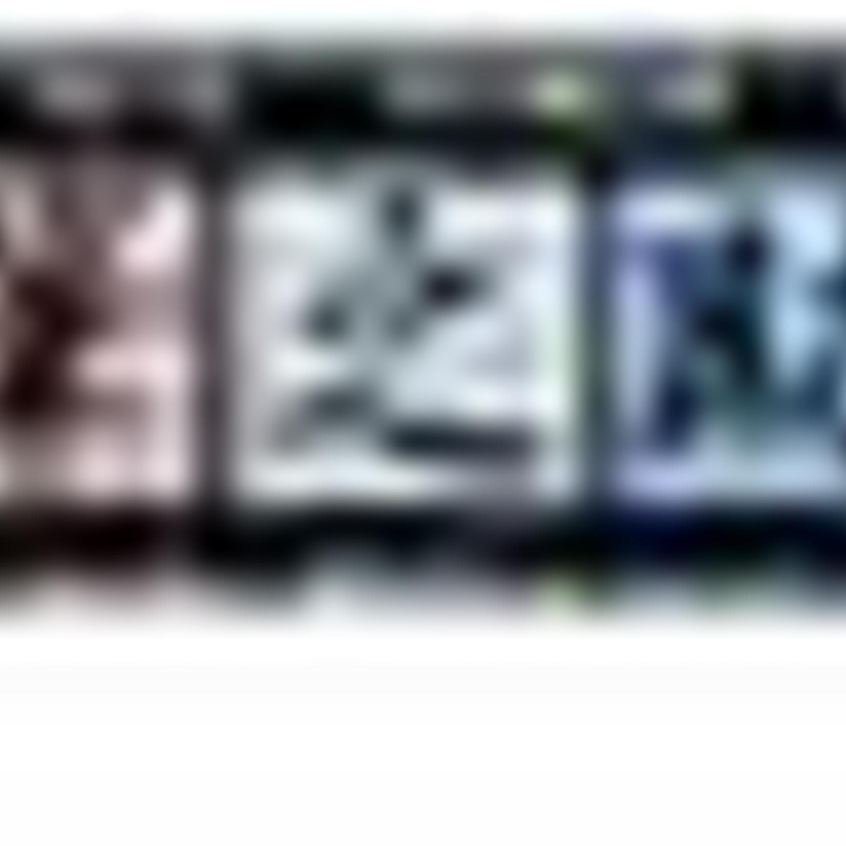 Tombow Fudenosuke Pen 2er, harte/weiche Spitze schwarz,