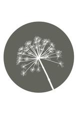 Zoedt Muurcirkel olijfgroen met berenklauw - voor binnen