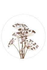 Zoedt Muurcirkel droogbloemen  - voor binnen