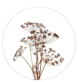 Zoedt Muurcirkel droogbloemen - in 2 formaten