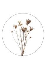 Zoedt Muurcirkel gedroogde bloemen - voor binnen