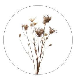 Zoedt Muurcirkel gedroogde bloemen - in 2 formaten