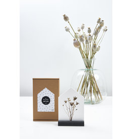 Zoedt Veel beterschap, cadeautje: huisje met droogbloemen
