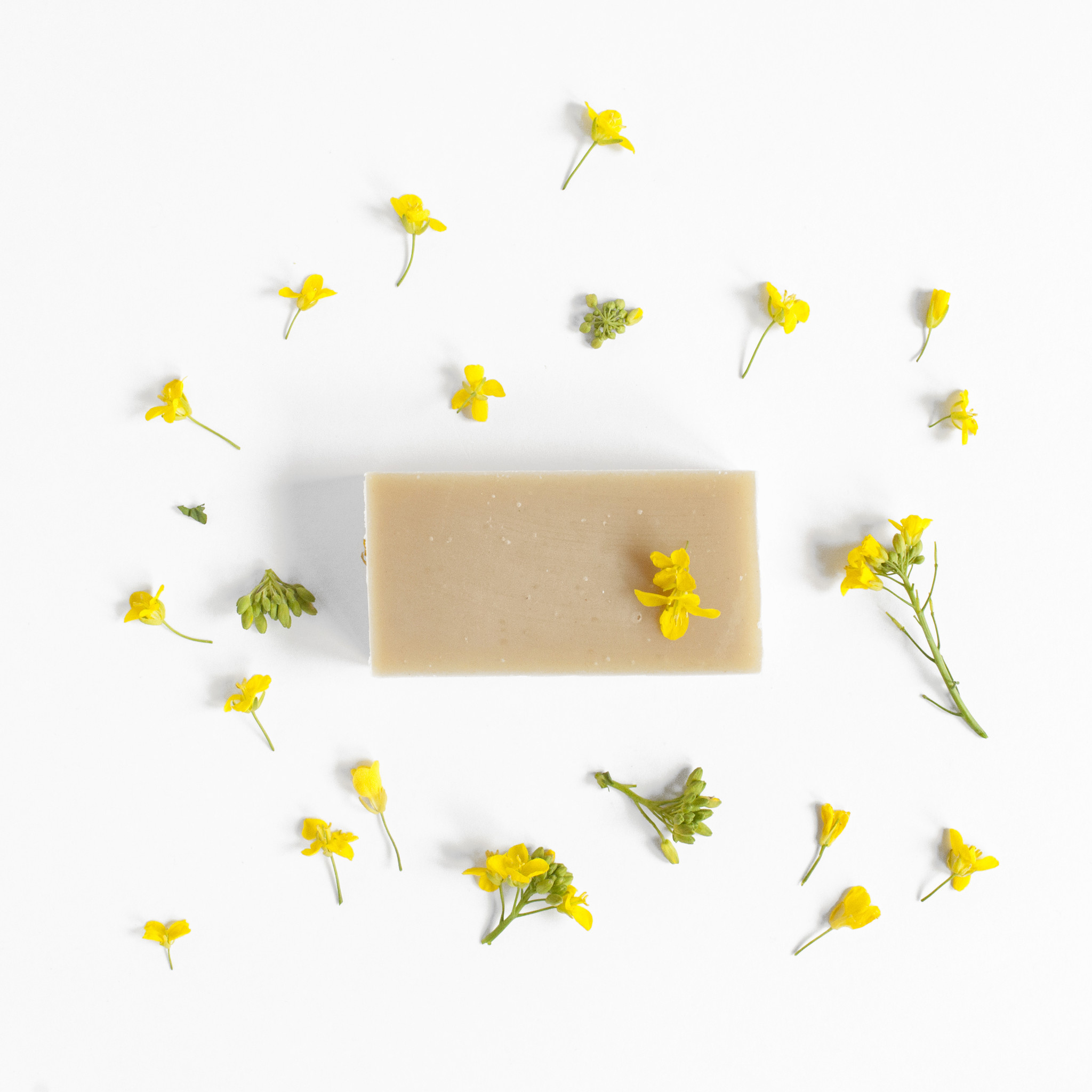 Seasonal soap Spring