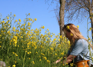 http://www.werfzeep.blog/wickenburghse-bos-nl/wildplukpasta-recept-met-koolzaad/