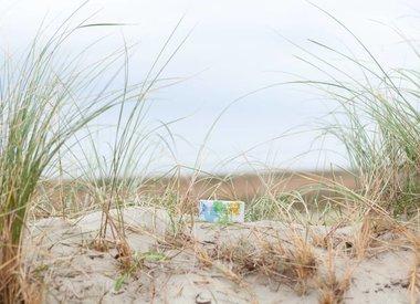 http://www.werfzeep.blog/samenwerkingen-nl/vier-jaar-schierzeep-in-het-zonnetje/