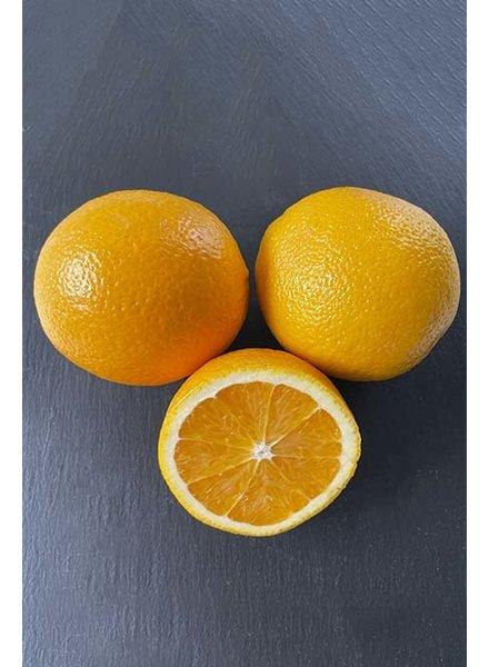 Fruchtzubereitung   Orange   Bio