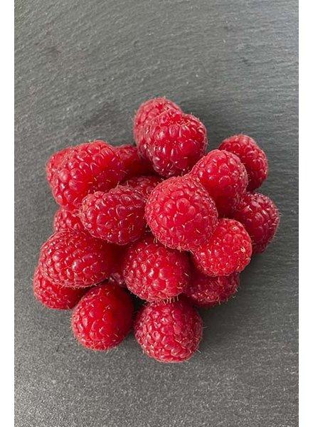 Fruchtzubereitung   Himbeere   Bio