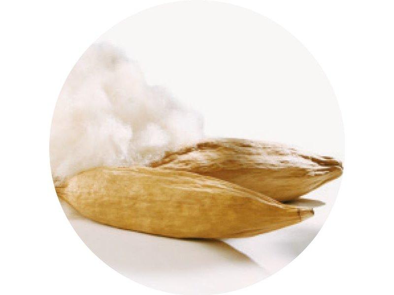 dormiente Kapokbaumwoll-Unterbett Natural Breeze