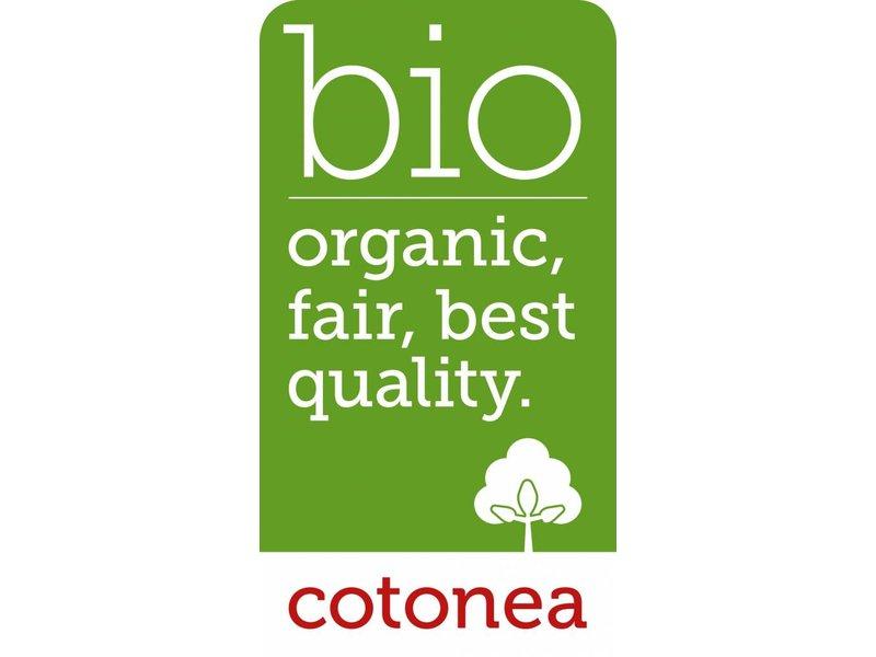 cotonea - Copy