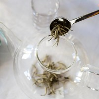 Silver Needle - Bai Hao Yin Zhen - Witte Thee