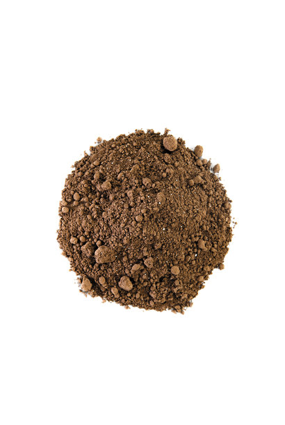 Choc Dog - Cacao