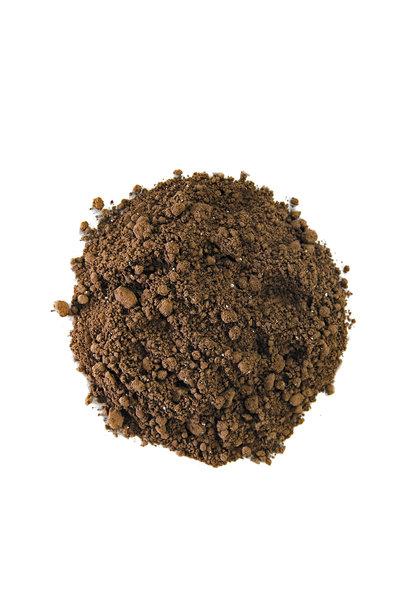 Piña Pig - Cacao