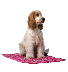 Aqua Coolkeeper Dog Cooling pad Roses