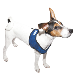 Aqua Coolkeeper Pet Cooling harness Pacific Blue